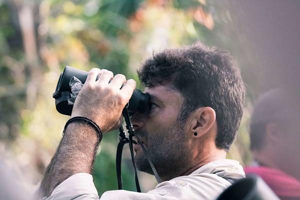 The Top 3 Best 10×50 Binoculars for Birding