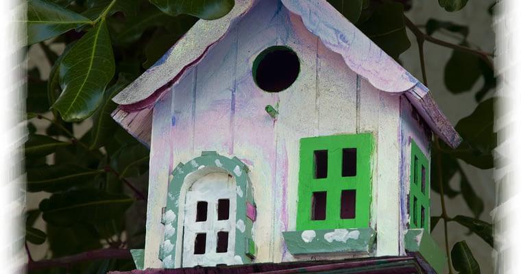 Easy Bird House Plans